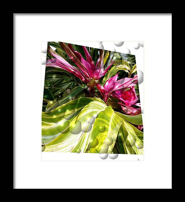 Leaves Framed Print featuring the photograph Fire Leaves by Pepsi Freund