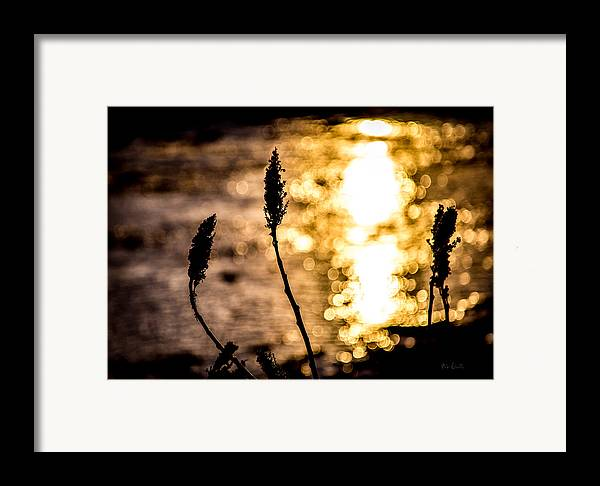 Winter Framed Print featuring the photograph First Day by Bob Orsillo