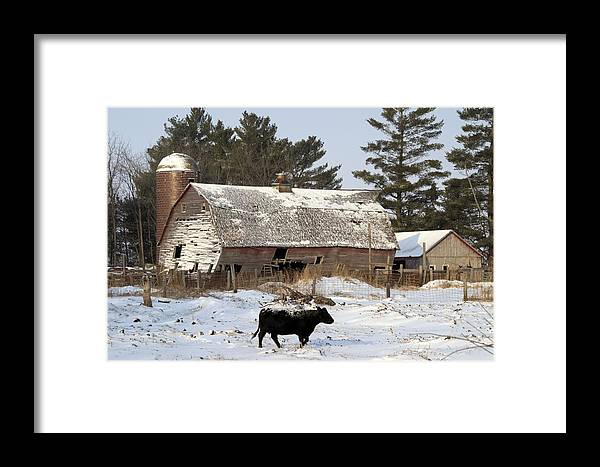 Winter Framed Print featuring the photograph First Day Of Winter by Bonfire Photography