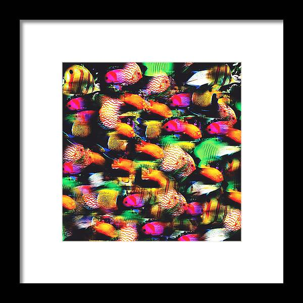 Color Framed Print featuring the digital art Fish And Fishes by Jessie J De La Portillo