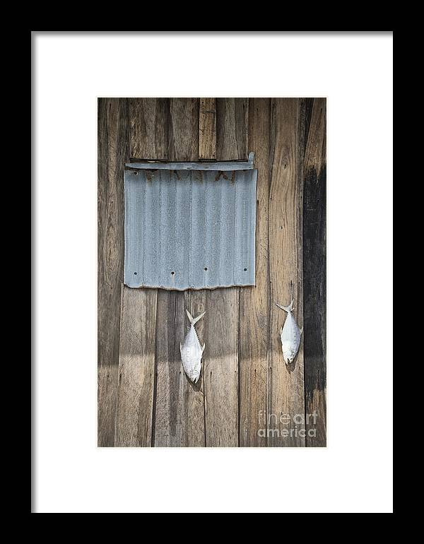 Abstract Framed Print featuring the photograph Fish Drying Outside Fisherman House by Jacek Malipan