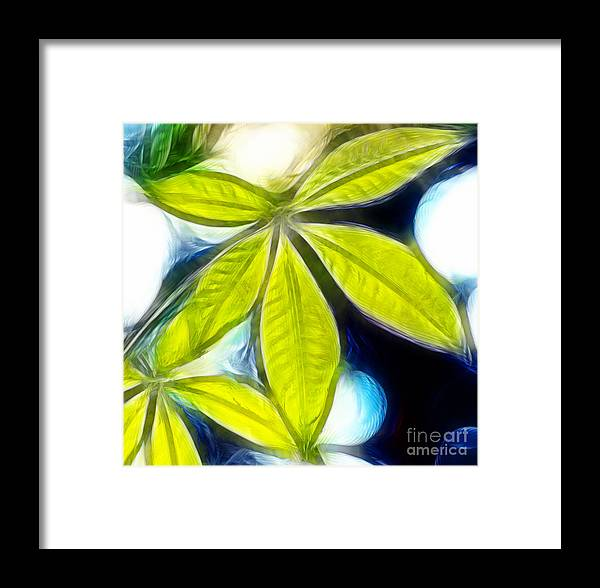 Tree Framed Print featuring the photograph Five Leaves. by Dipali S