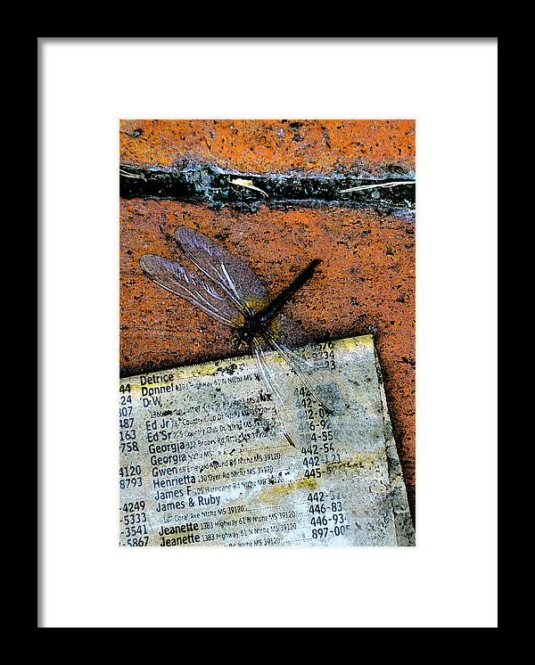 Dragonfly Framed Print featuring the photograph FlightPage by Leon Hollins III