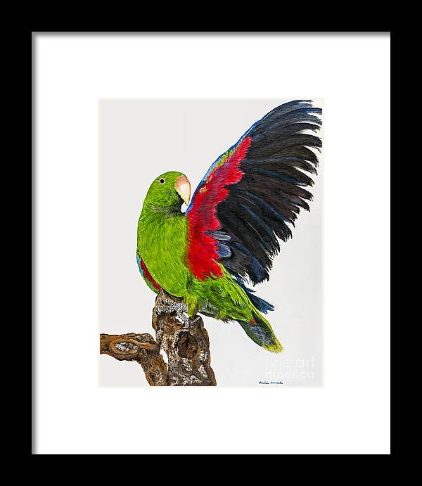 Parrot Framed Print featuring the painting Flirting Parrot By Barbara Heinrichs by Sheldon Kralstein