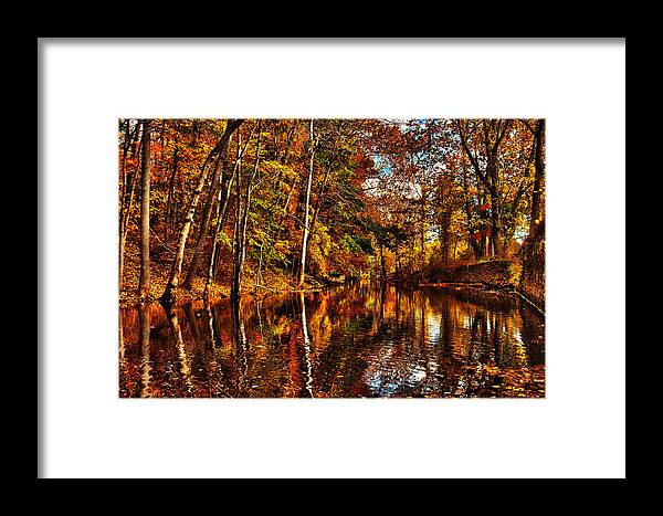 Fall Framed Print featuring the photograph Floating Down Heavenly River. by Richard Sylvester