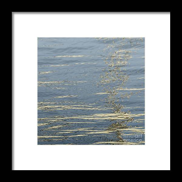 Floating Framed Print featuring the photograph Floating On Blue 17 by Wendy Wilton