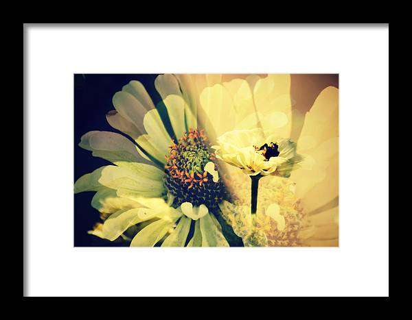 Flower Framed Print featuring the photograph Floral Beauty by Alice Gipson