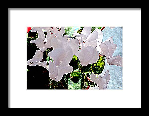 Cyclamen Framed Print featuring the photograph Floral Clouds by Diane montana Jansson