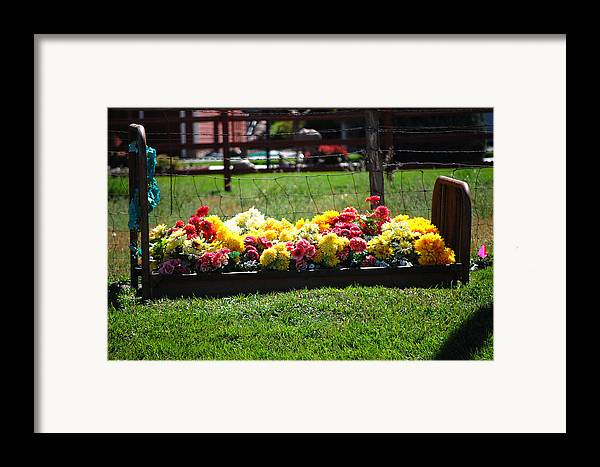 Flower Flowers Bed Iron Cast Dirt Colorful Grass Garden Fence Huntsville Utah Framed Print featuring the photograph Flower Bed by Holly Blunkall