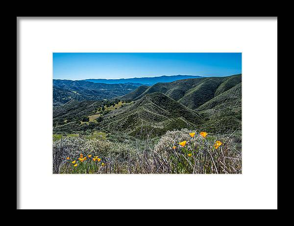 Mountains Framed Print featuring the photograph Flowers and Mountains by Paul Johnson