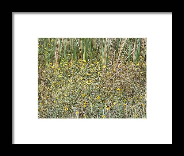 Yellow Framed Print featuring the painting Flowers Flowers Flowers by Ione Hedges