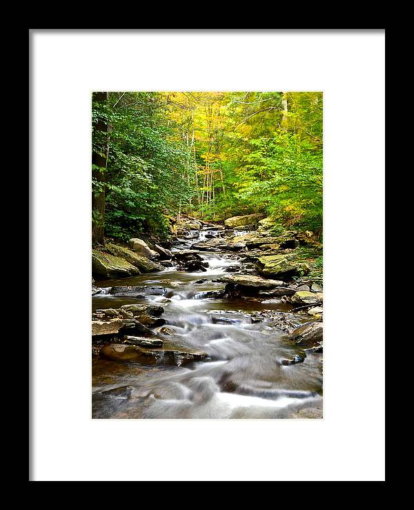 Stream Framed Print featuring the photograph Flowing Stream by Frozen in Time Fine Art Photography