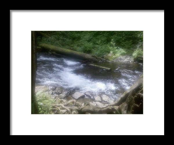Nature Framed Print featuring the photograph Flowing Water by Heather L Wright