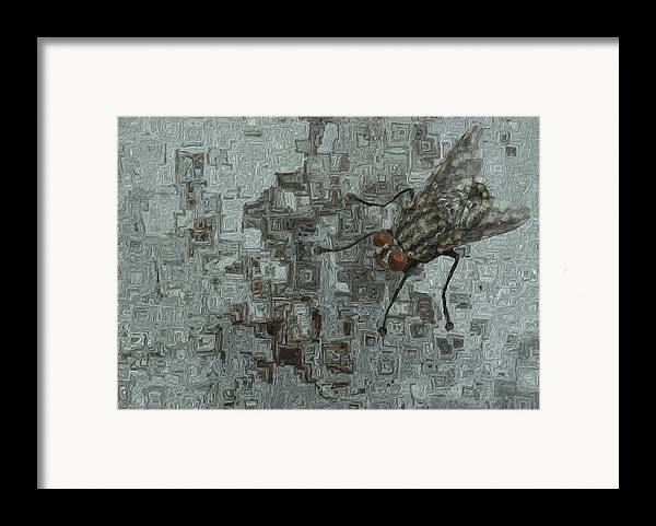 Abstract Framed Print featuring the painting Fly On The Wall by Jack Zulli