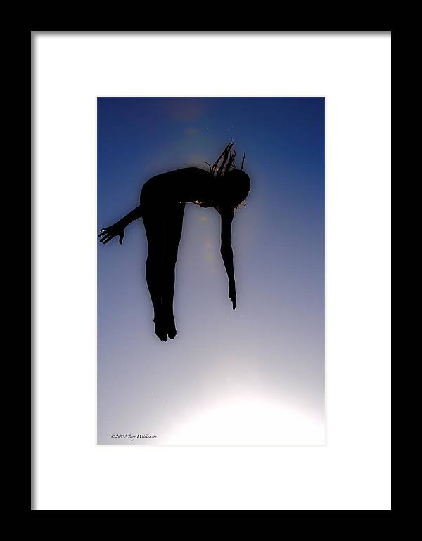 Dive Framed Print featuring the photograph Flying High by Jerry Williamson