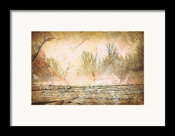 Landscape Framed Print featuring the photograph Fog Abstract 4 by Marty Koch