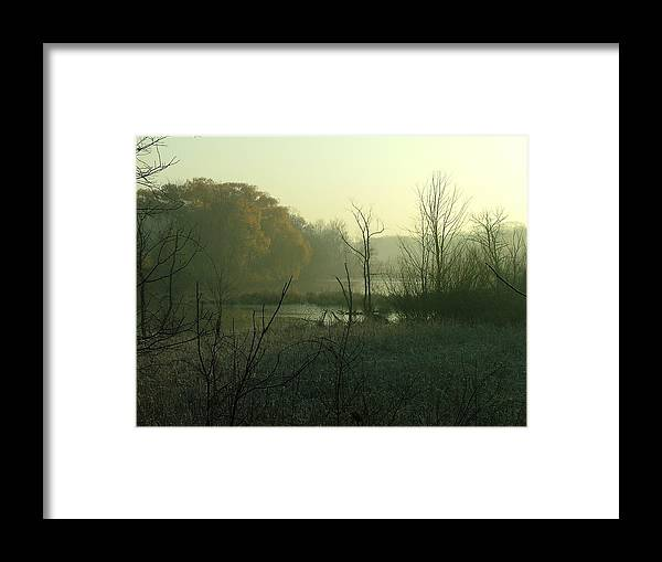Landscape Framed Print featuring the photograph Fog On The Pond by Dennis Pintoski