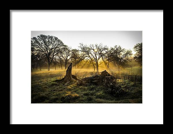 Fog Framed Print featuring the photograph Foggy Morning 3 by Philip Tolok