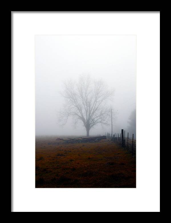 Trees Framed Print featuring the photograph Foggy Sunday by Leon Hollins III