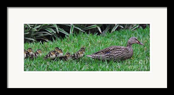 Make Way For The Ducklings Framed Print featuring the photograph Following Mommy by Lee Dos Santos