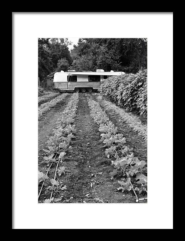 Vegetable Garden Framed Print featuring the photograph Food Trailer by Robert Bermea