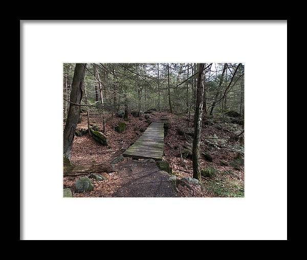 Wooden Footbridge Framed Print featuring the photograph Foot Bridge by Catherine Gagne