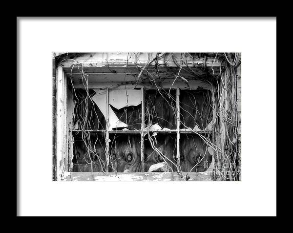 Texas Framed Print featuring the photograph Foreboding by Fred Lassmann