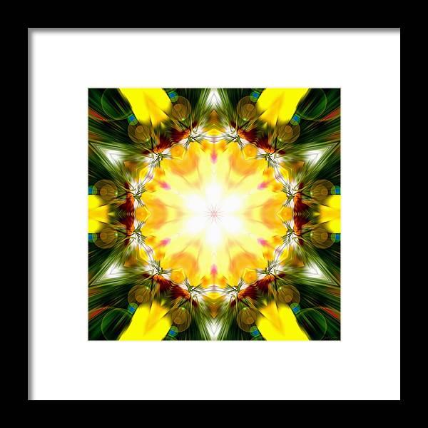 Sacredlife Mandalas Framed Print featuring the photograph Forest Dawning by Derek Gedney