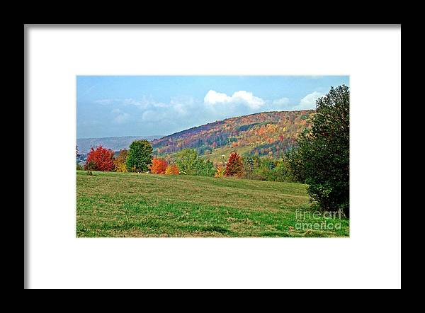Western Ny State Framed Print featuring the photograph Forest Of Fire by Christian Mattison