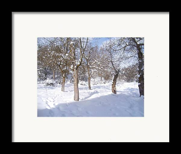 Time To Fix The Problem Framed Print featuring the pyrography Forest Ofconstantine by Boultifat Abdelhak badou