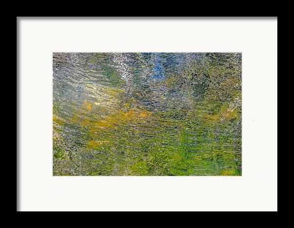 Abstract Framed Print featuring the photograph Forest Reflection by Roxy Hurtubise