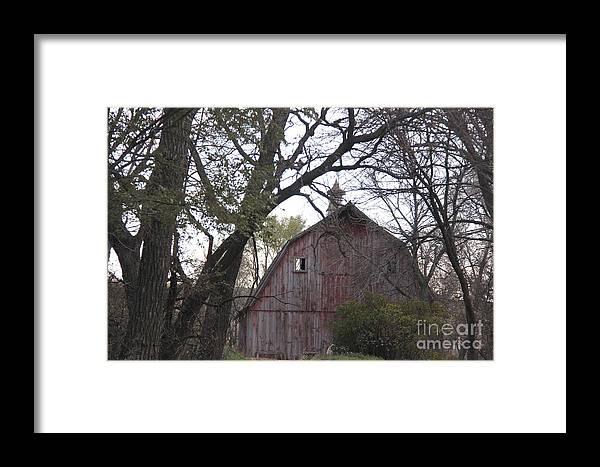 Barns Framed Print featuring the photograph Forgotten Barn by Yumi Johnson
