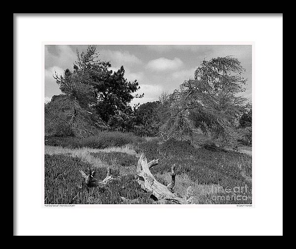 California Landscapes Framed Print featuring the photograph Fort Ord Texture by Carla Hamelin