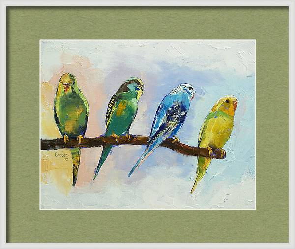 Four Parakeets by Michael Creese