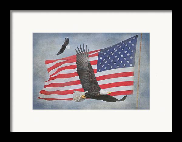 Freedom Framed Print featuring the photograph Freedom Flight by Angie Vogel