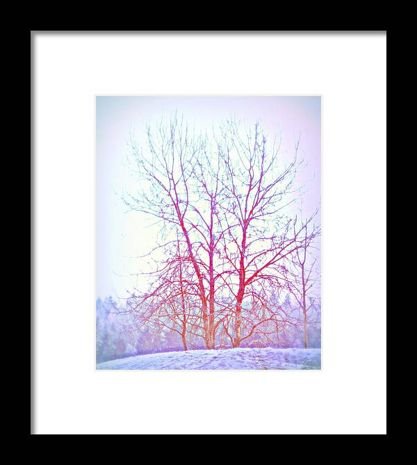 Landscape Framed Print featuring the photograph Freezing Cold Feet In Peace by Hilde Widerberg