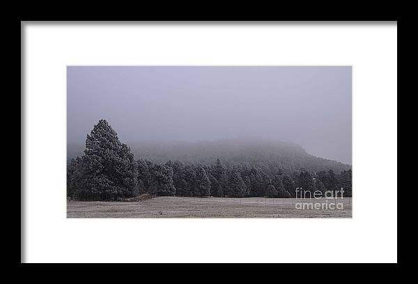Freezing Fog Framed Print featuring the photograph Freezing Fog by Bill Long