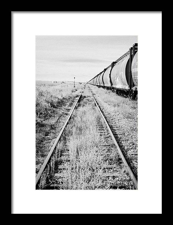 Former Framed Print featuring the photograph freight grain trucks on former canadian pacific railway now great sandhills railway through leader S by Joe Fox
