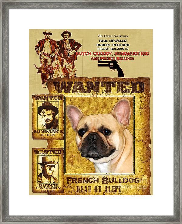 3X French Bulldog 18x12 inch Framed Canvas Prints