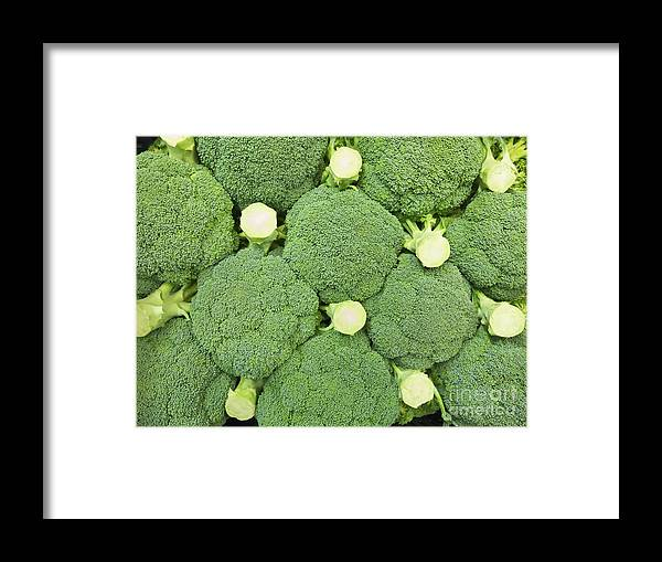 Agricultural Framed Print featuring the photograph Fresh Broccoli Pattern by Roberto Morgenthaler