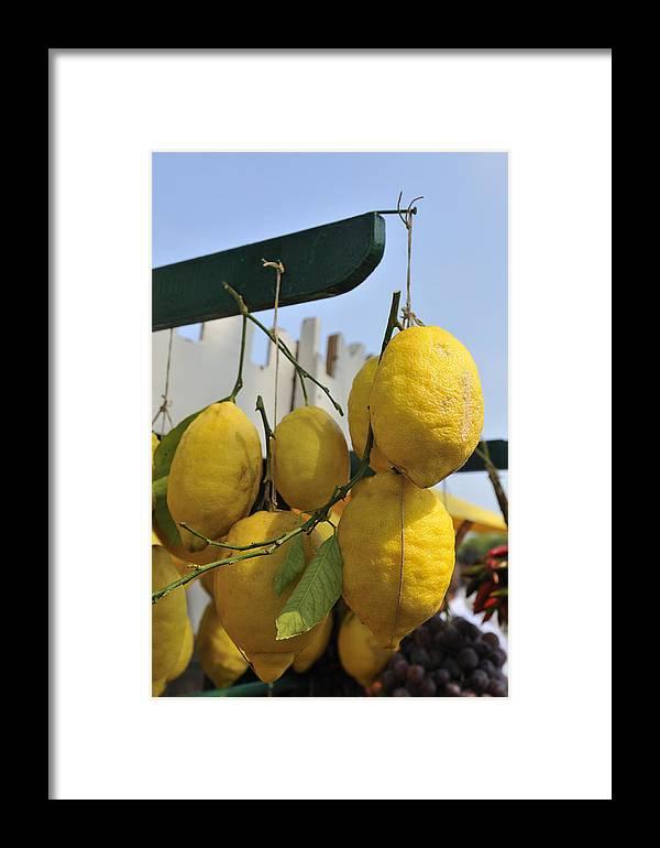 Lemons Framed Print featuring the photograph Fresh Lemons At The Market by Matthias Hauser