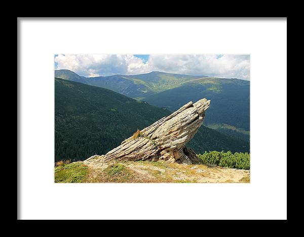 Carpathian Framed Print featuring the photograph Frog by Pavlo Kuzyk