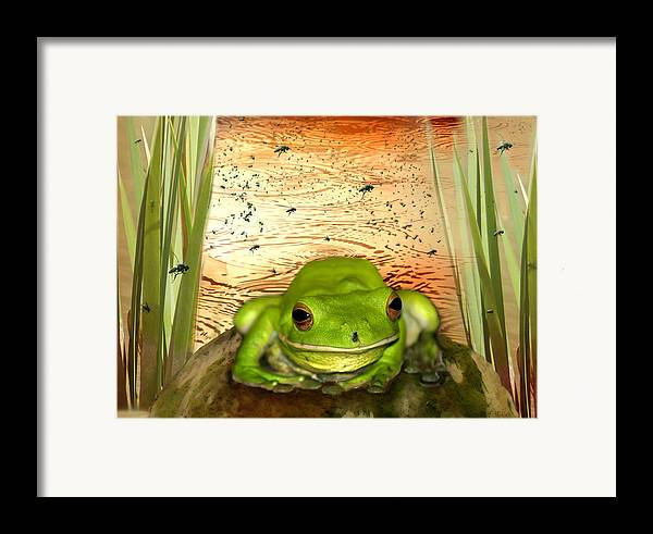 Nature Framed Print featuring the photograph Froggy Heaven by Holly Kempe