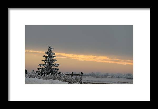 Sunrise Framed Print featuring the photograph Frosty Sunrise by Linda Koch