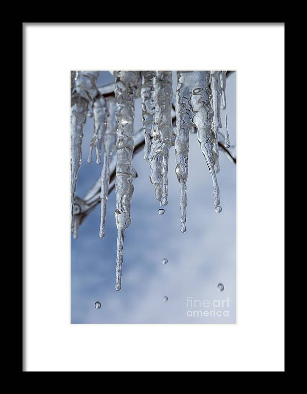 Ice Framed Print featuring the photograph Frozen In Time by Jim McCain