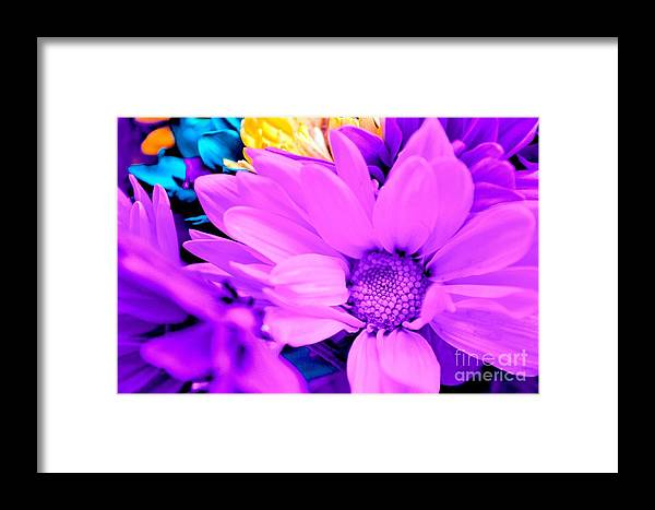 Pink Flower Framed Print featuring the photograph Fuchsia Flower by LLaura Burge