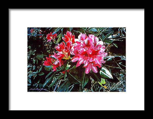 Flowers Framed Print featuring the painting Fuschia Rhododendrons by David Lloyd Glover