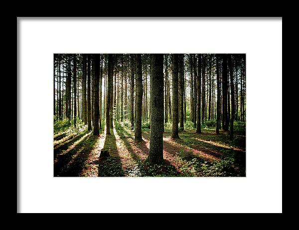 Tranquility Framed Print featuring the photograph Galarneau by Guillaume Seguin