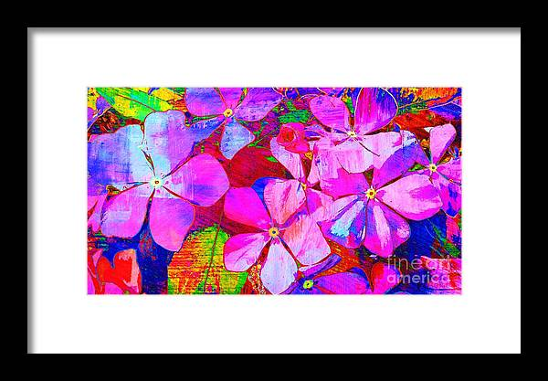 Flowers Framed Print featuring the photograph Garden Of Hope 002 by Robert ONeil