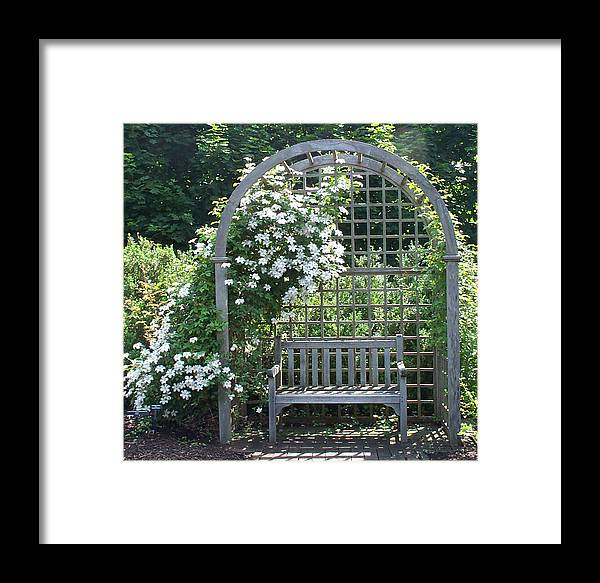 Garden Framed Print featuring the photograph Garden Respite by Barbara McDevitt